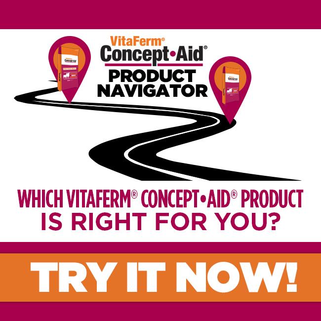 Concept Aid Quiz