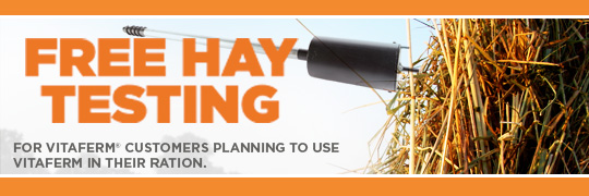 Free Hay Testing