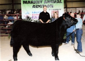 Lehman steer cured by Sure Champ!