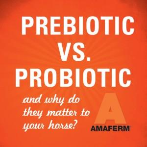 Pre vs. Probiotic