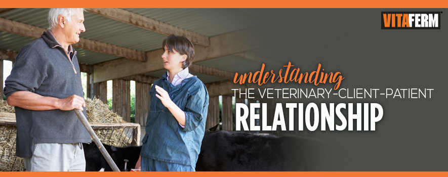Understanding the Veterinary-Client-Patient Relationship
