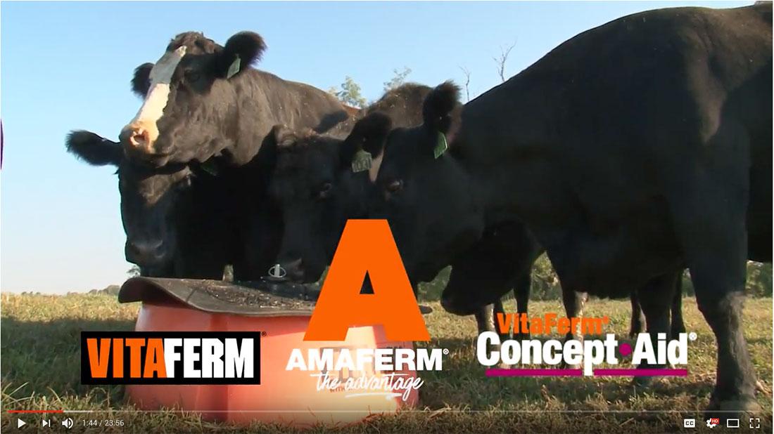VitaFerm American Rancher